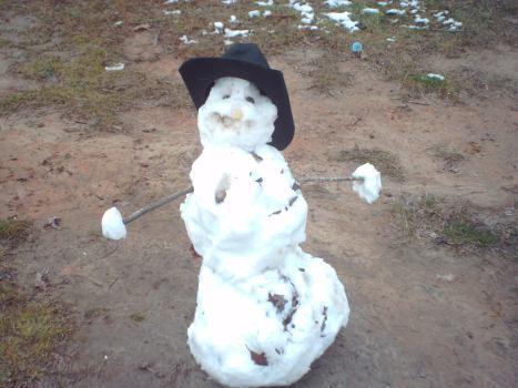 snowman21
